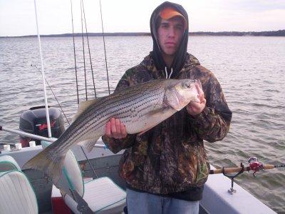 Lake texoma striper fishing guide service for Texoma fishing report