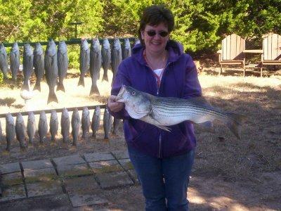 Lake texoma striper fishing guide service for Lake texoma fishing report