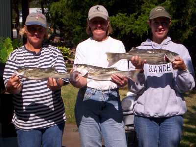 Lake Texoma Striper Fishing with StriperMaster