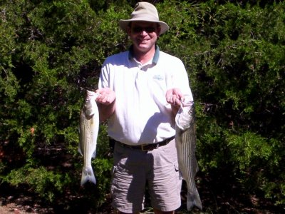 striper guide fishing lake texoma stripermaster.com