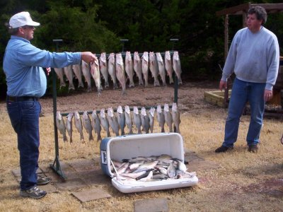 Lake Texoma striper caught by StriperMaster Lake Texoma striper guide service