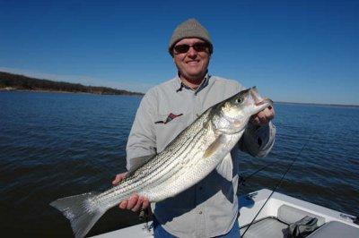 Lake Texoma Striper Fishing, stripermaster.com