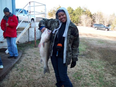 how to catch striper fish