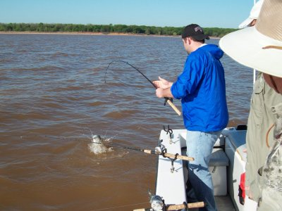 Lake texoma striper fishing reports from for Lake texoma fishing report