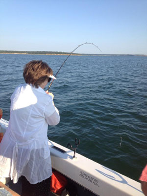 Lake texoma striper fishing reports and lake conditions for Striper fishing lake texoma